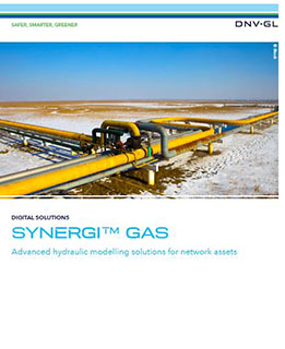 Synergi Gas brochure