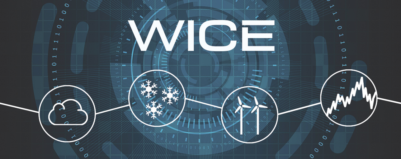 WICE icing loss assessment